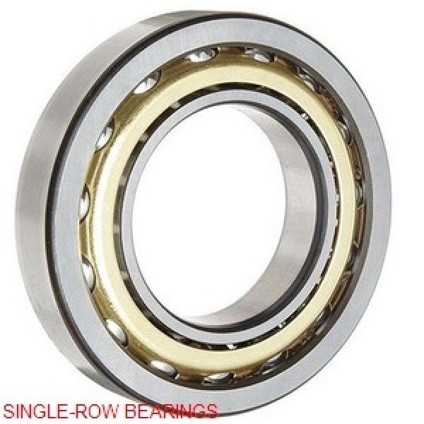 NSK HM746646/HM746610 SINGLE-ROW BEARINGS #1 image